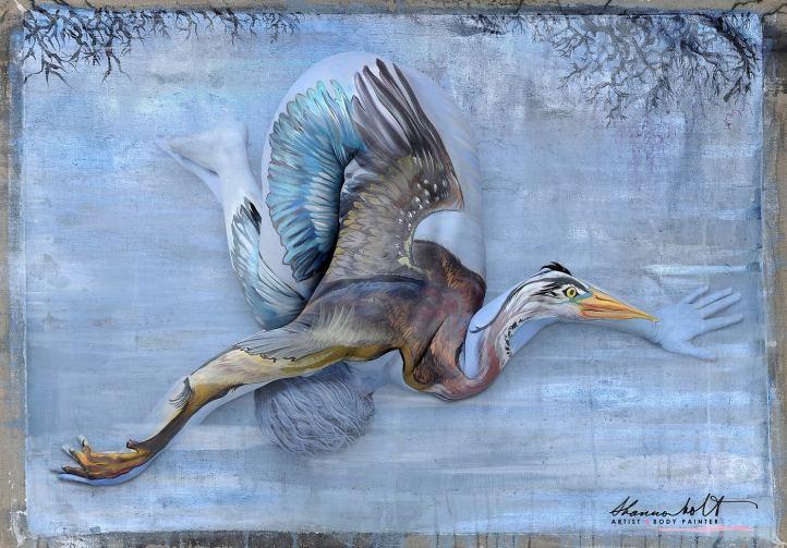 Blue-Heron-Image_Shannon-Holt-Ryder-Gledhill-2018-z